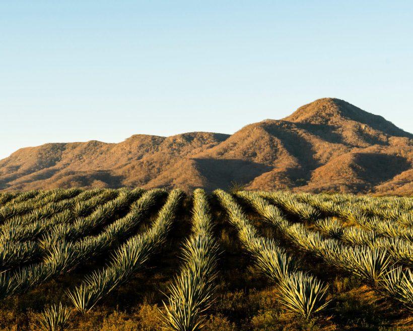 8 destinos perfectos para hacer turismo rural en México